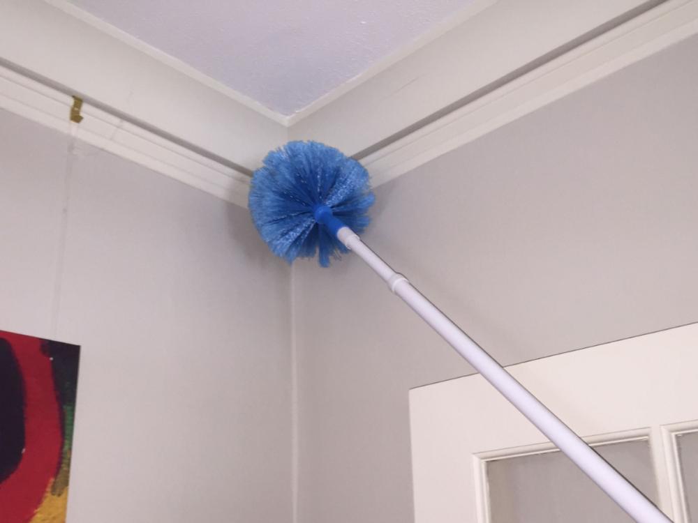 cobweb-corner-deep clean